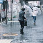 【台風19号が近づいています】
